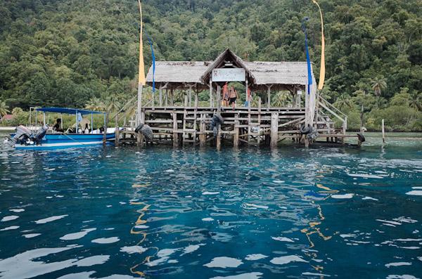 Raja ampat dive lodge resort review wira nurmansyah - Raja laut dive resort ...