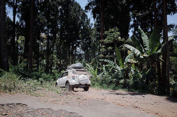 Menyusuri jalan menuju Banyuwangi