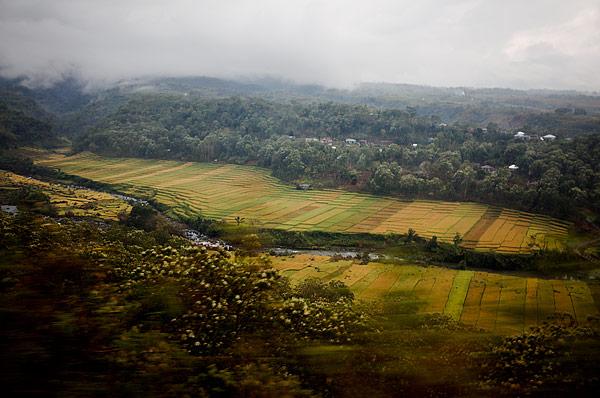 Perjalanan ojek dua jam melewati sawah, naik gunung, lembah...