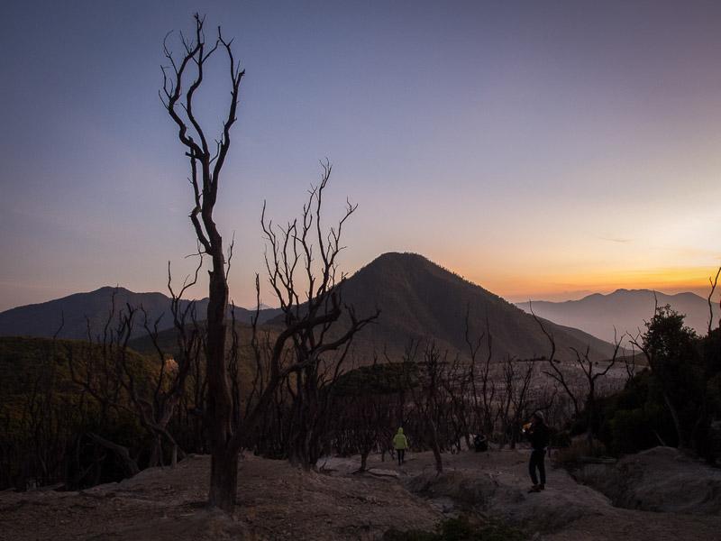 Sunrise dari hutan mati.