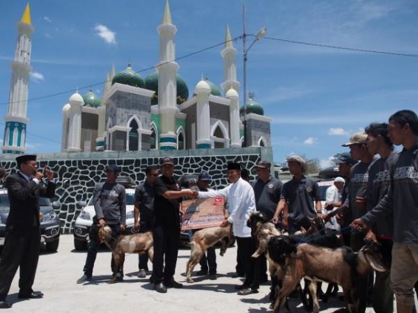 Kurban 7 ekor kambing dari tim terios 7 wonders
