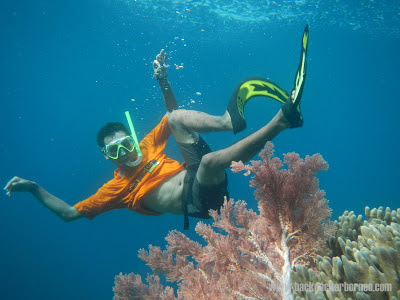 Backpacker Borneo di Raja Ampat