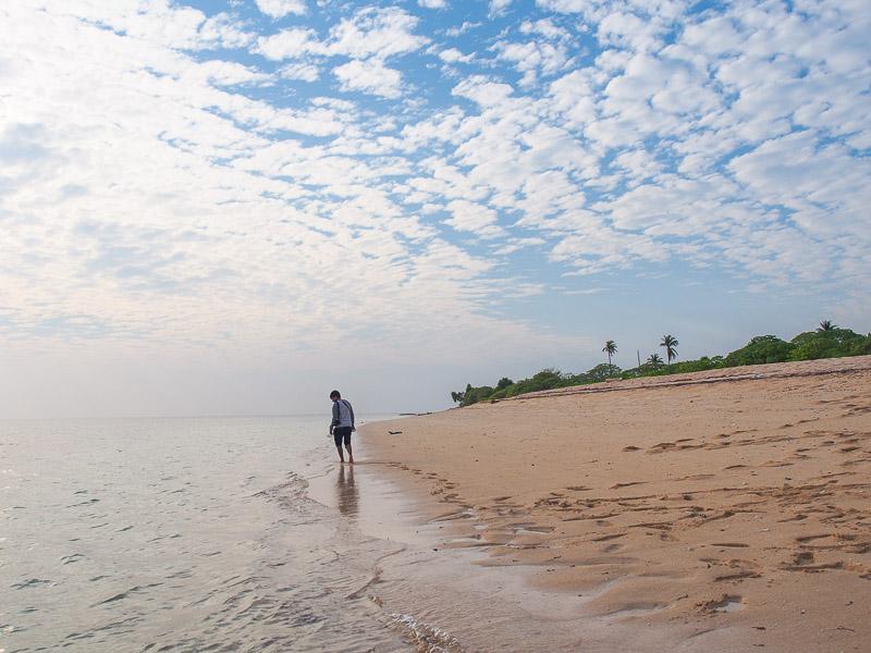 Pantai di Tomia