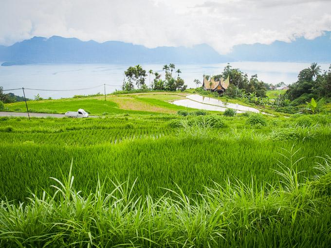 kelok 34 padang sumatera barat