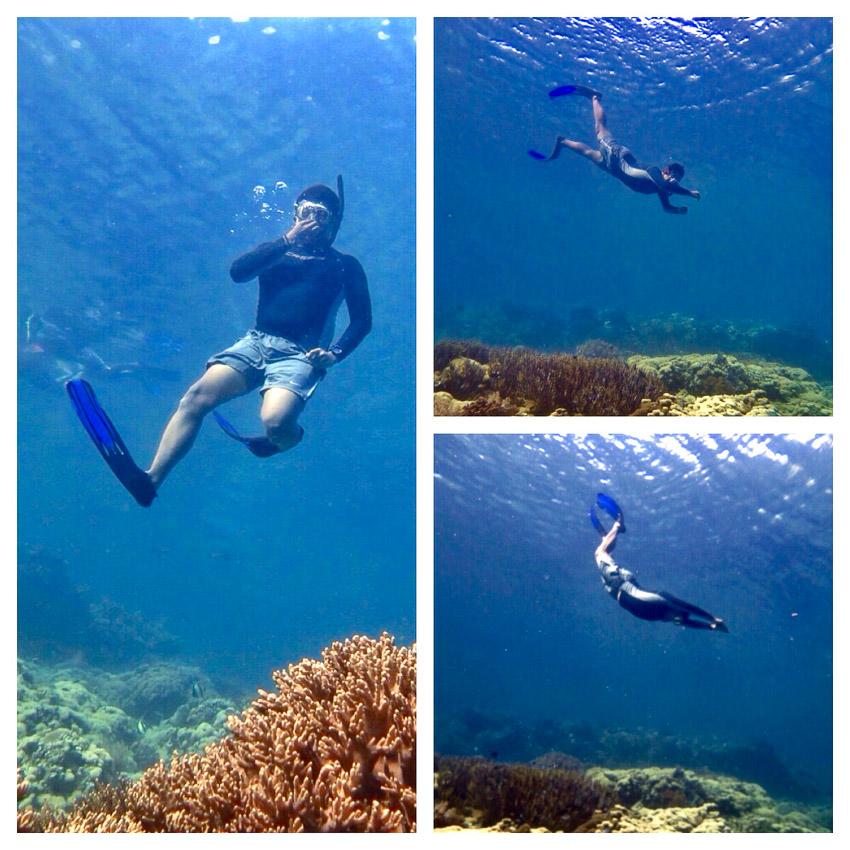 Ini freediving di menjangan, bukan spesies sotong baru.  Photo by Marischka Prudence