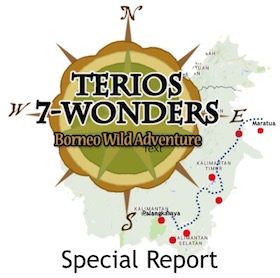 Terios 2015 Borneo Report